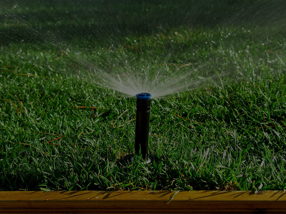 Belmont Irrigation
