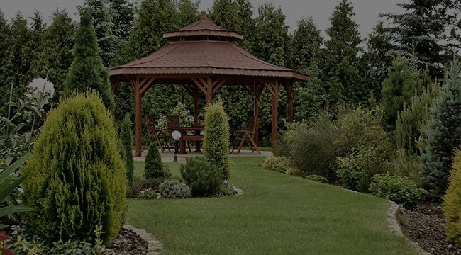 Belmont Garden Design