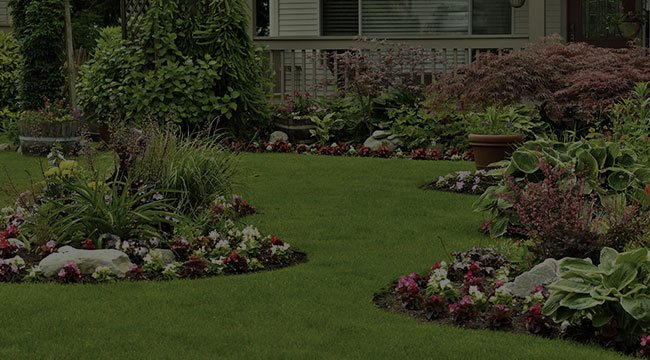 Belmont Landscape Design